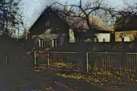 Scannen von Negativfilmrollen in Magdeburg
